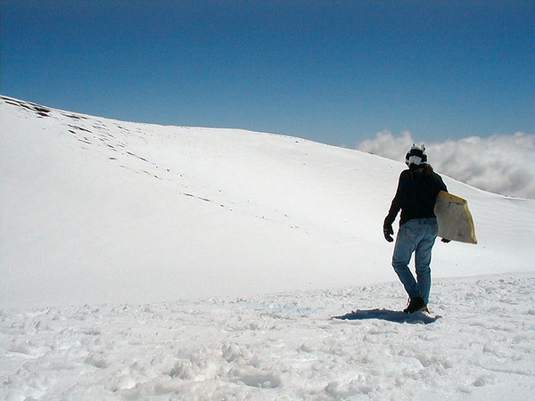 Surf, Snow, Scenic